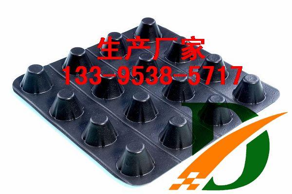 塑料排水板操作规程_塑料凸壳排水板,塑料凸壳排水板厂家_凹凸型塑料排水板厂家 ...